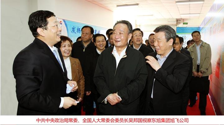 时任全国人大常委会委员长吴邦国视察东旭集团旭飞公司