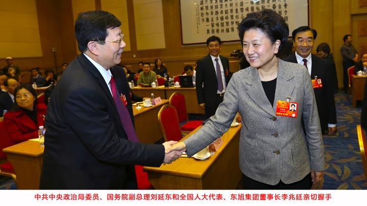 国务院副总理刘延东会见东旭集团董事长李兆廷